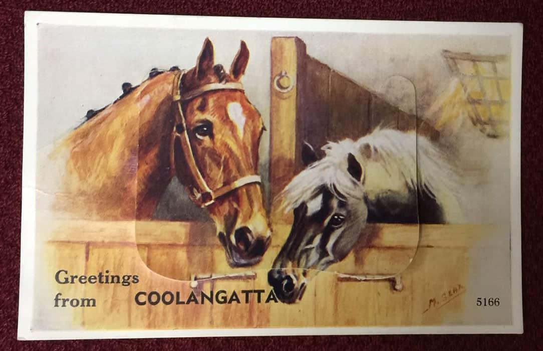 postcard coolangatta front